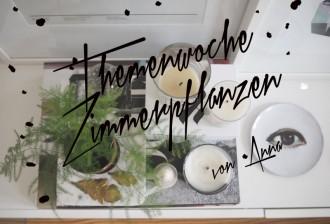 Themenwoche-Zimmerpflanzen-Anna