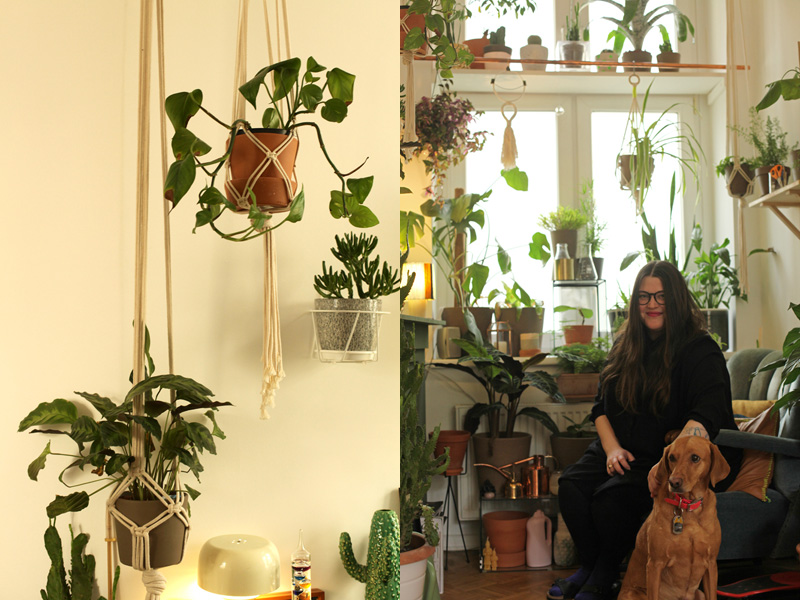Femtastics-Studio-Hammel-Pflanzen