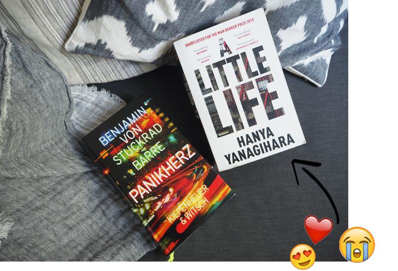 Themenwoche-Buch-Tipps-Anna-Panikherz-A-little-life