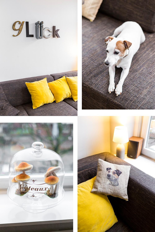 Femtastics-Yasmina-Osterdeich-Wohnzimmer-Hund