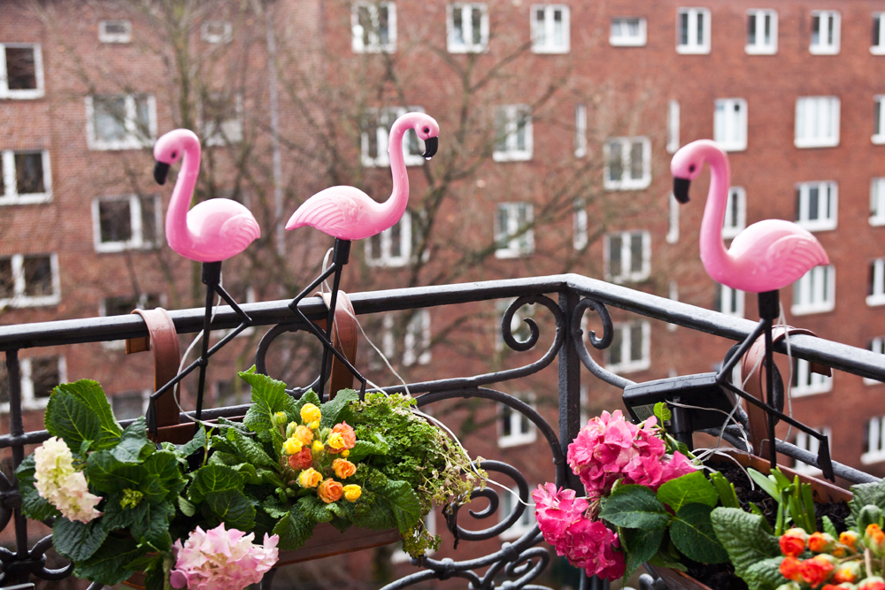 flamingo-girlande