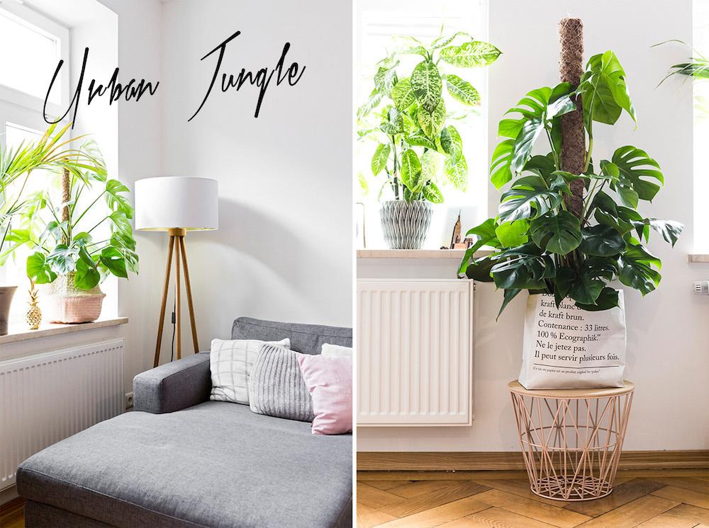 josie-loves-urban-jungle-trend