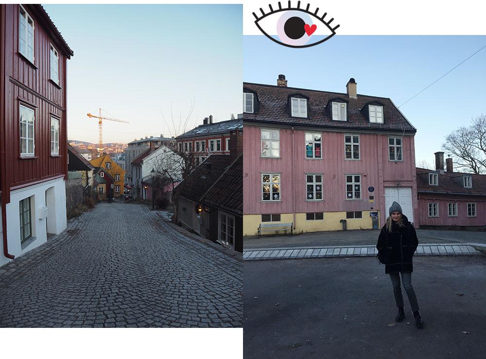 femtastics-Oslo-alte-Haeuser