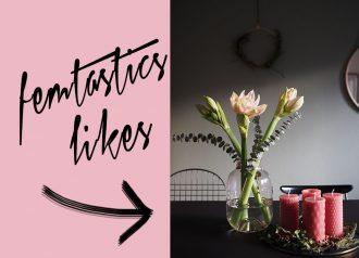 femtastics-likes-Weihnachtspost-Blume2000.de