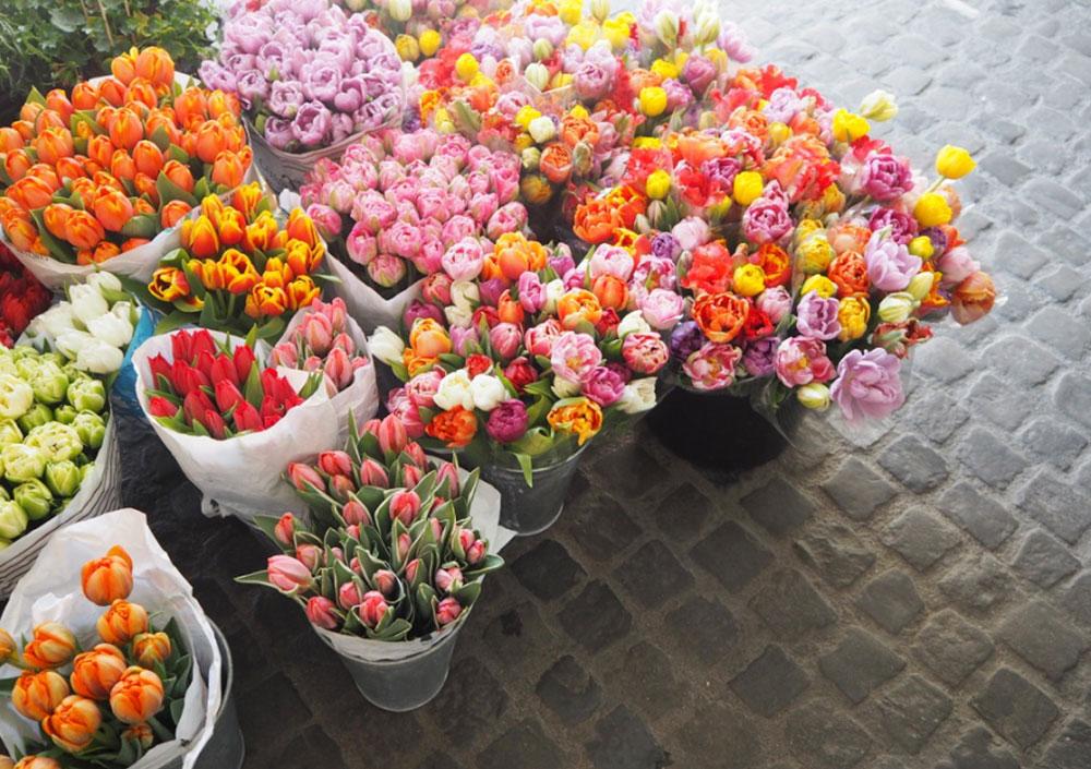 Femtastics-Zuerich-Blumen