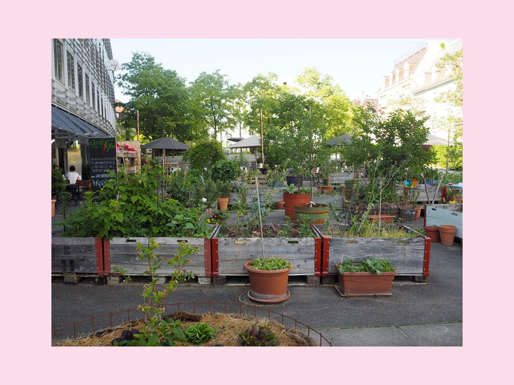 femtastics-Zuerich-The-Artisan-Urban-Garden