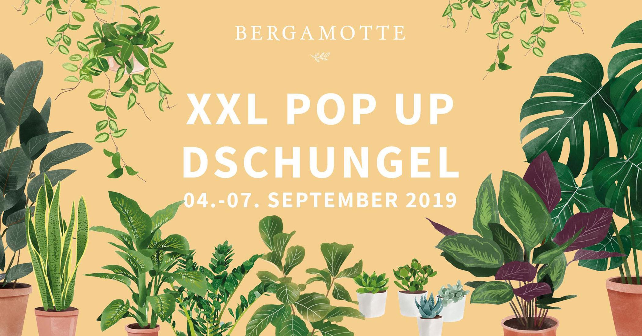 Bergamotte-pop-up