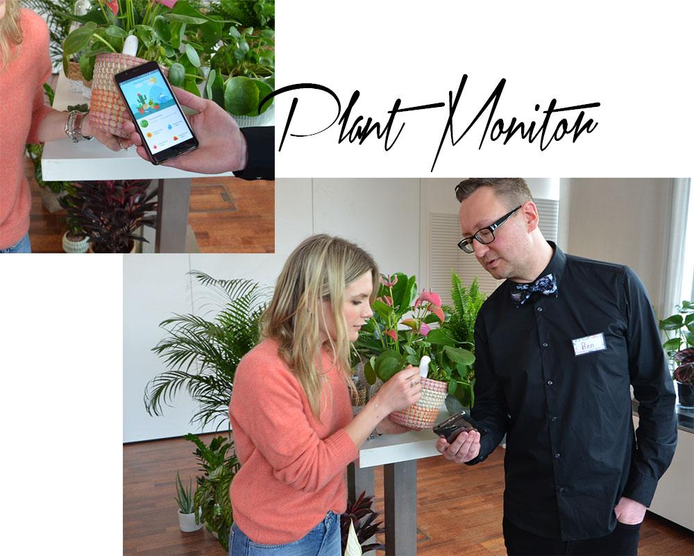 homtastics-Ben-Ganser-Plant-Monitor