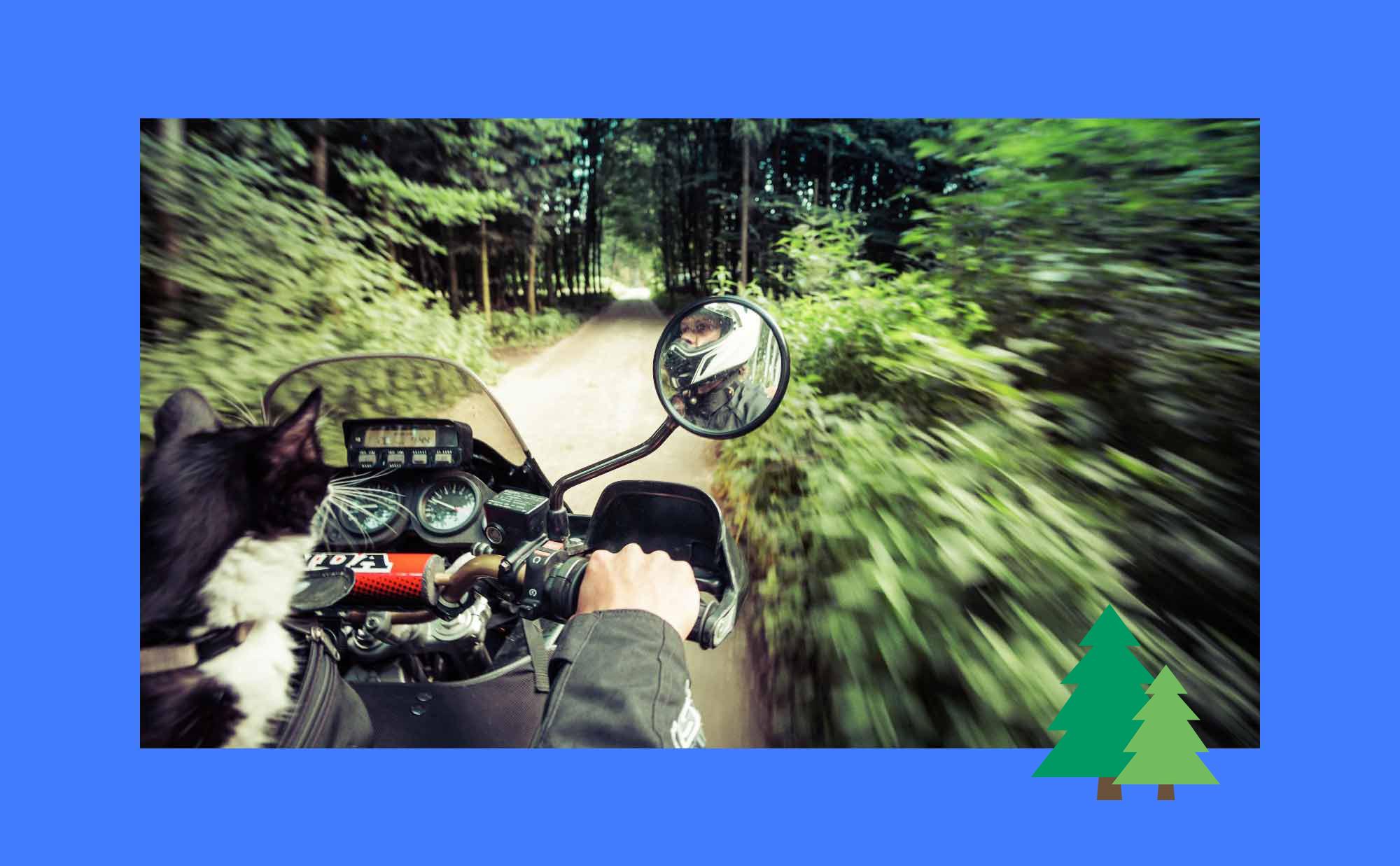 Motorrad-alleine-reisen